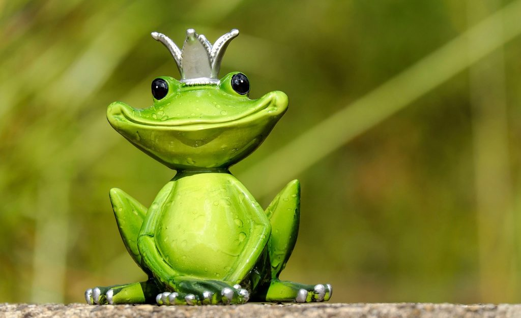 Get rid of frogs in the backyard, pool, or pond.