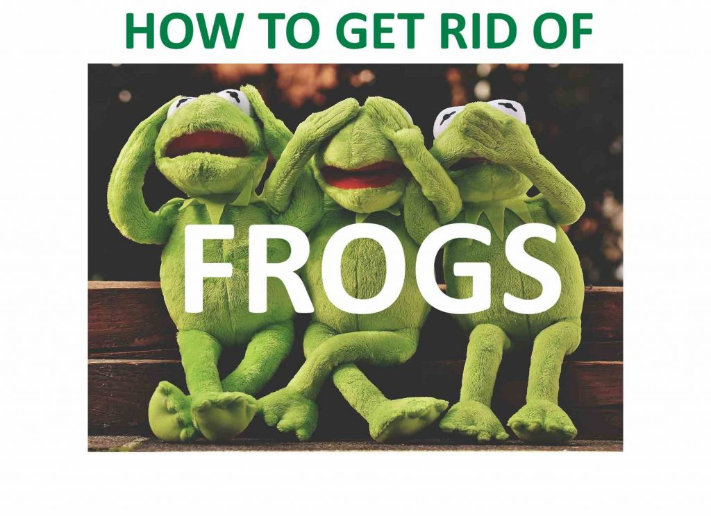 Frog DIY home remedies.
