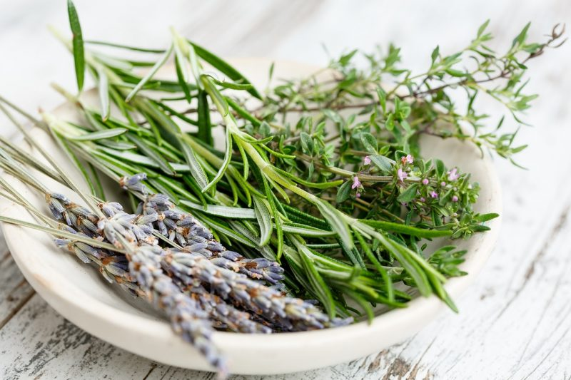 Thyme as a wasp repellent.