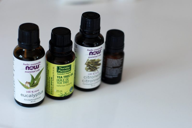 Essential oils for Meyer bugs.
