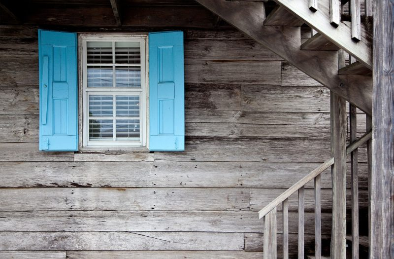 Windows on homes are easy targets for pests