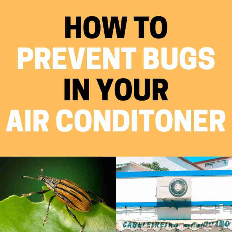 How to get rid of pests portable AC.