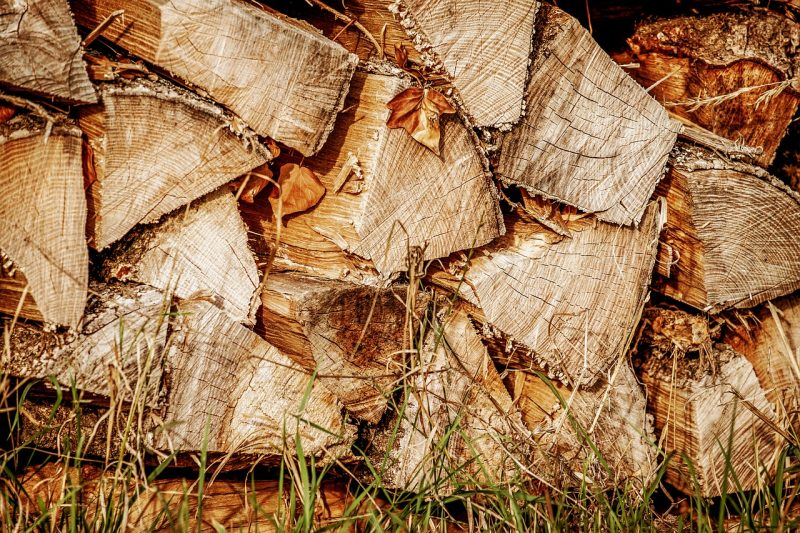 Mosquitoes in woodpile.