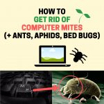 How to Get Rid of Computer Mites in Your Laptop (Fast and Easy)