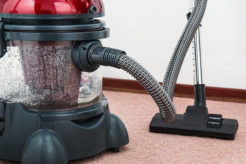 Remove leaf footed bugs with a vacuum cleaner.