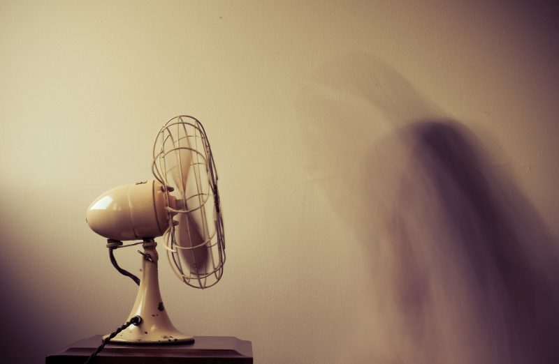 A fan is a natural mosquito deterrent.