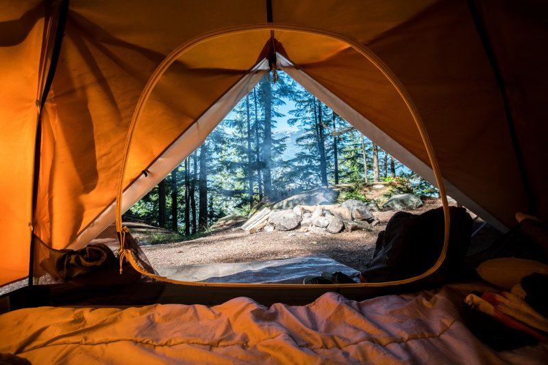 Scorpion proof tent.