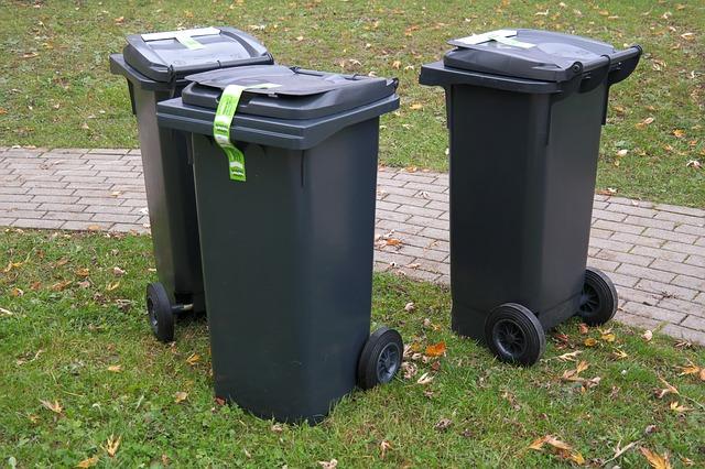 Wheelie bins with bugs.