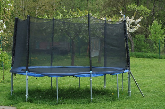 Pest free trampoline.